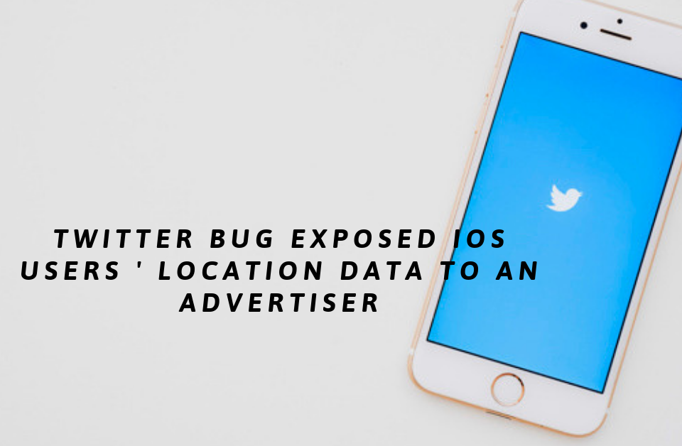 Twitter Bug Exposed iOS