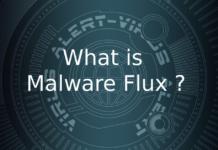 Malware Flux