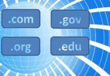 Fake Domains