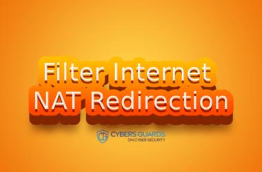 Filter Internet NAT Redirection